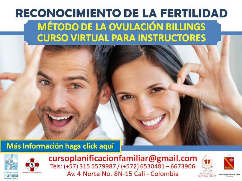Mas información - Click aquí >>>
