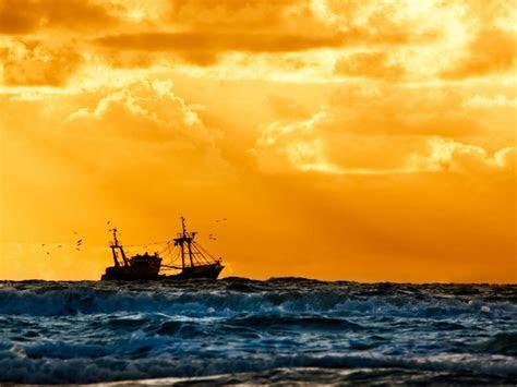 vessel  sunset fishing birds ship navy  hd