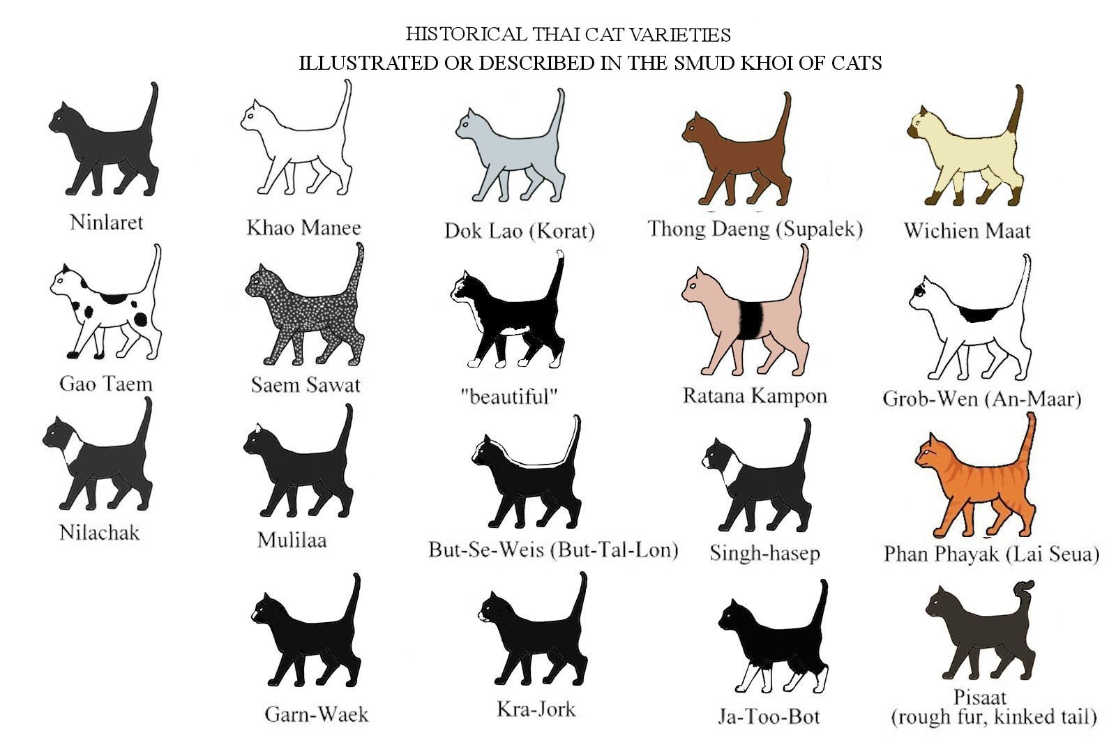 Breeds Originating From South East Asia