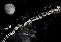 ice-moon