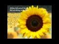 http://www.youtube.com/watch?v=xIuhbeLFdDA&list=PL807B36B41556416B&feature=plcp