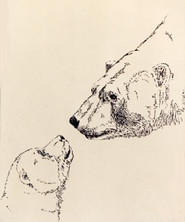 "polar bear drawing Pen & Ink on paper 1988 9"" x 12"" Sold"