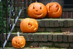 pumpkin 039