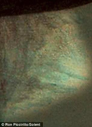 Um búfalo também é praticamente visível para o canto inferior direito da pintura como ele aparece quando colocar de lado