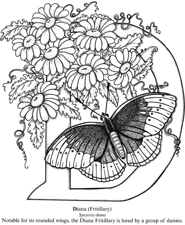 Intricate Butterfly Coloring Pages at GetColorings.com ...