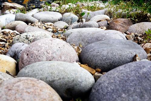 everybody must get stones