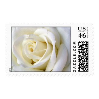 Rose White Postage