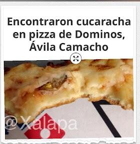 Domino S Pizza Xalapa