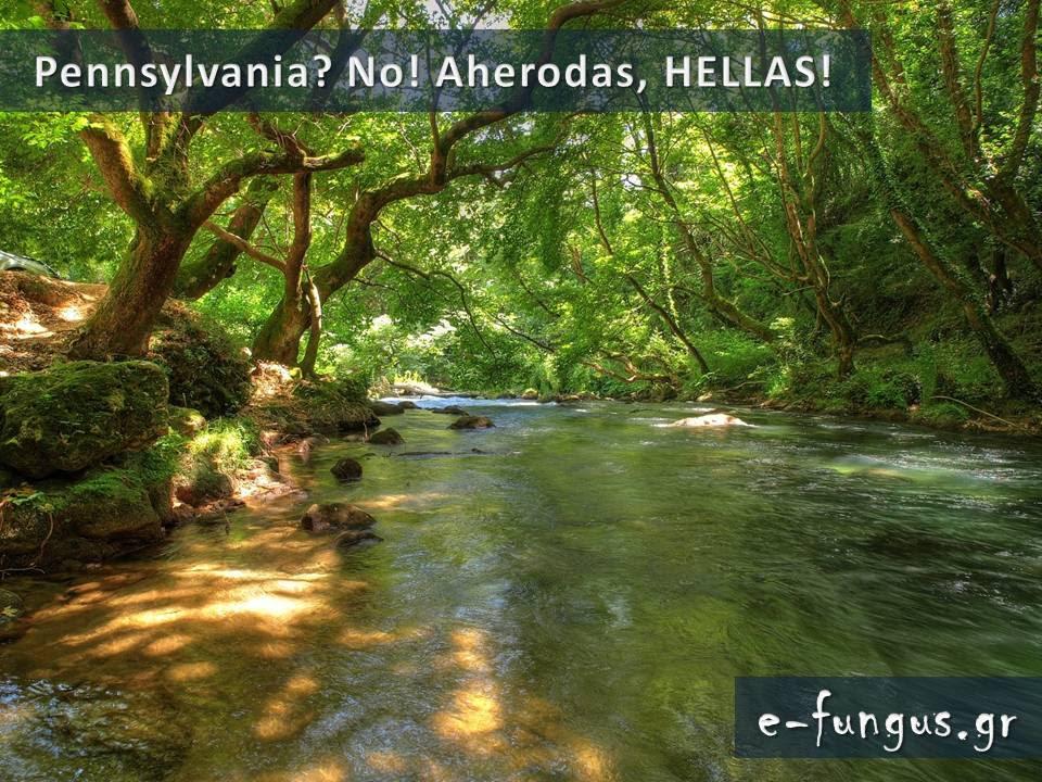tilestwra.gr : 36 Υπάρχει Παράδεισος στη γη; ΥΠΑΡΧΕΙ και βρίσκεται φυσικά στην Ελλάδα! Δείτε τον...