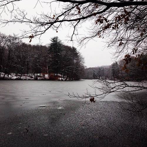 snowypond