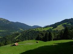 alpen fields