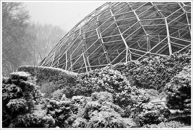 Climatron In Snow 3-26-11