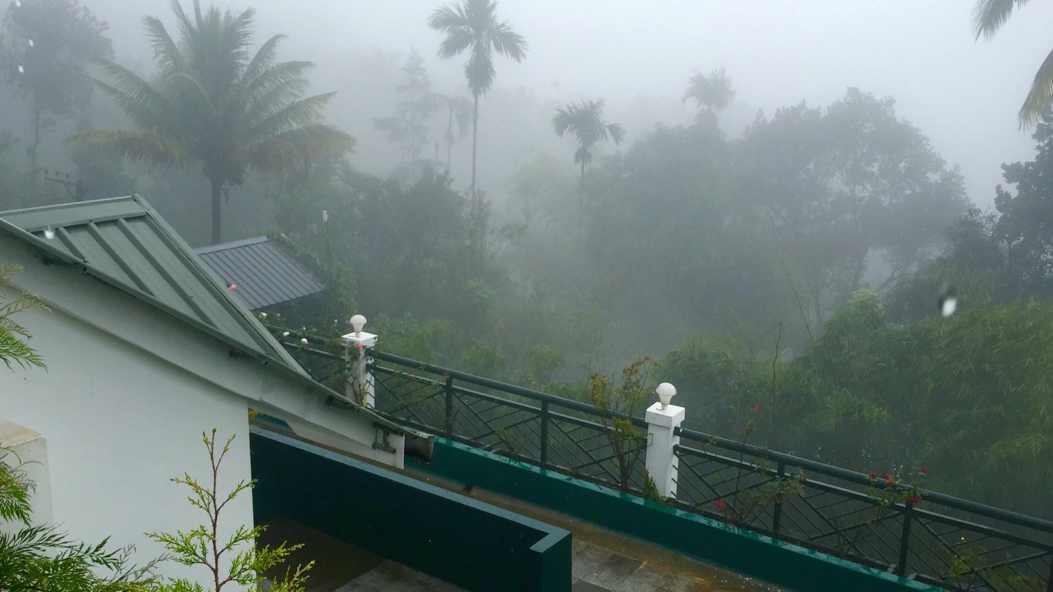 view from window-Munnar Tea Country resort-Munnar-KaynatKazi Photography-2016