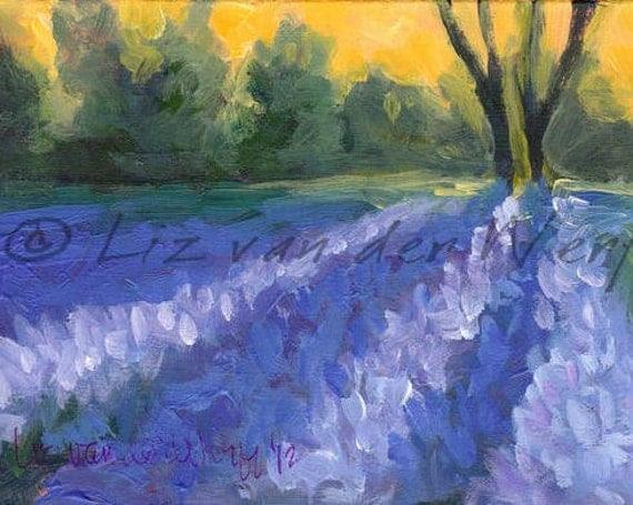 Bluebonnet Shadows - Original Impressionist Colorist Painting - Springtime Bluebonnet Landscape Painting