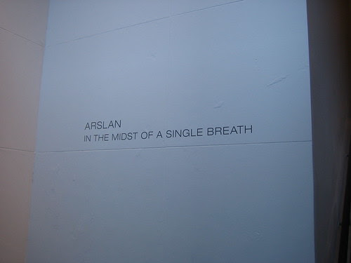 Arslan - In the Midst of a Single Breath, Dillon Gallery, New York _8101