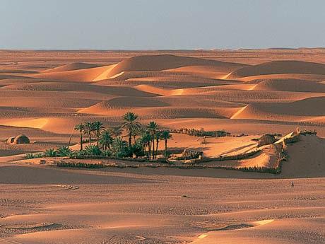 Sahara -