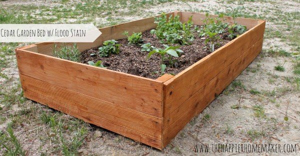DIY Cedar Raised Garden Bed with Flood Staining Made Simple and ...