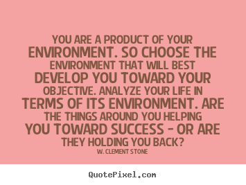 You Are A Product Of Your Environment So Choose W Clement Stone