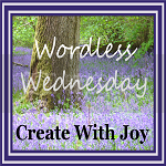 photo Wordless-Wednesday-Button-1501_zpsa48285ed.png