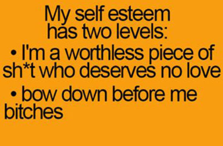 My Self Esteem Has 2 Levels Funny Pictures Quotes Memes Funny