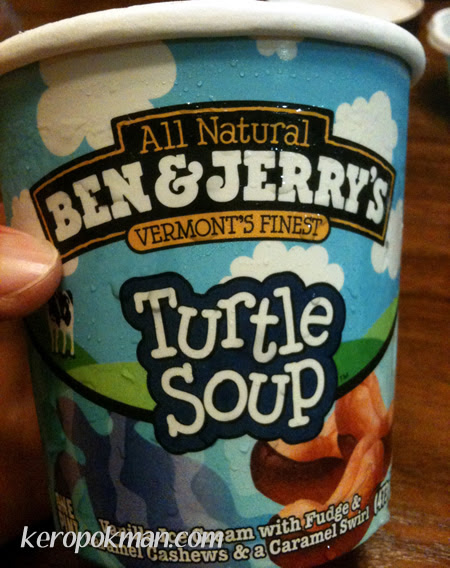 Ben & Jerry Turtle Soup