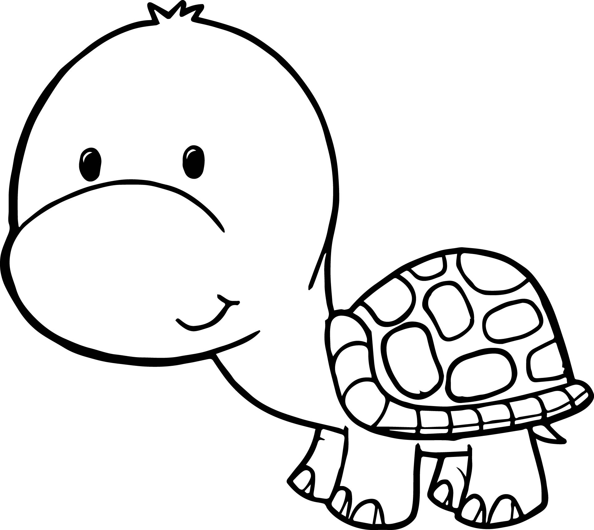 7500 Top Cartoon Turtle Coloring Pages Pictures