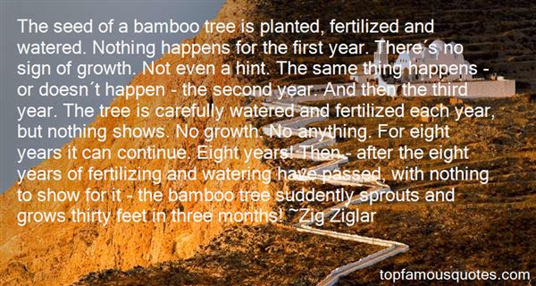 Bamboo Tree Quotes Best 4 Famous Quotes About Bamboo Tree