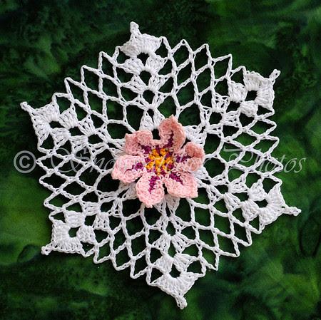 Picotee Snowflake