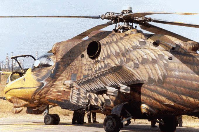 http://www.funcage.com/blog/wp-content/uploads/2010/07/afganistan-bird-helicopter.jpg