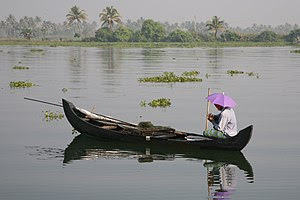 From the backwaters in Kerala.