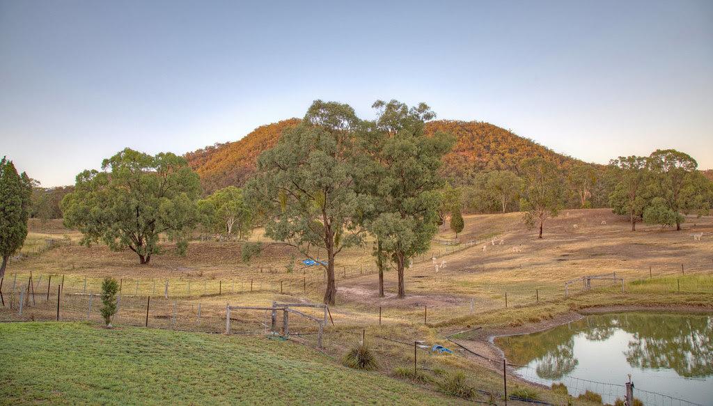 Starline Alpaca Farm & Farmstay Resort - Broke, Hunter Valley, NSW, Australia (view from cottage verandah)