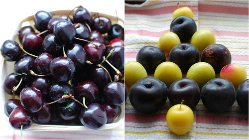 CSA Week 3: Fruit