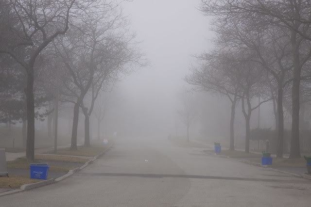 foggy street recycle day