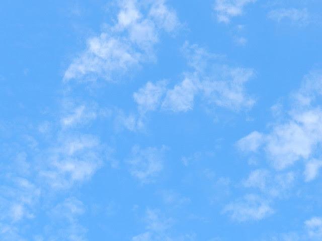 skywatchDSCN0618