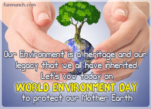 Quotes About Our Environment 229 Quotes