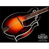 Gibson F-5L The Fern Mandolin V Shape Figured Maple Neck Fern Burst