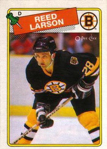 Larson Bruins photo Larson Bruins.jpg