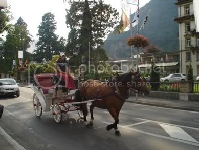 Horsewoman riding horse wagon
