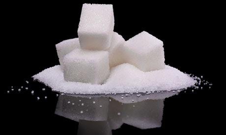 sugar obesity