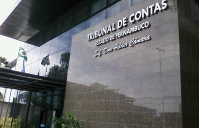 Além do parecer pela irregularidade, a conselheira Teresa Duere fez uma série de determinações às prefeituras (Foto: Divulgação / Assessoria TCE-PE)