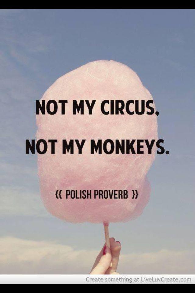 Quotes Avoiding Drama Angry Birds 2016 Imdb