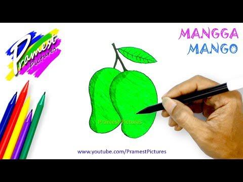 Mangga Cara Menggambar Dan Mewarnai Gambar Buah Buahan Untuk Anak