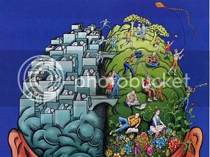 TZA's brain illustration