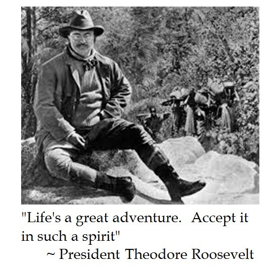 """an introduction to the life of teddy roosevelt Essay on the life of eleanor roosevelt  theodore """"teddy"""" roosevelt,  a life of leadership introduction the legacy of eleanor roosevelt is essentially."""
