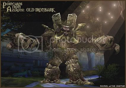 Postcards of Azeroth: Old Ironbark, by Rioriel Ail'thera