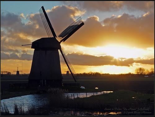 "Polder ""De Mijzen"" Windmills"
