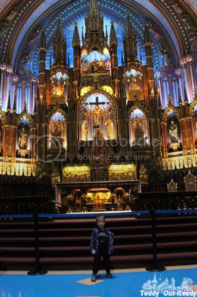 Teddy Notre-Dame Basilica