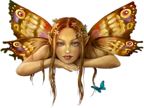 Thank You  Cherokeeladytn1964 for the Fairy photo d81a6207.png
