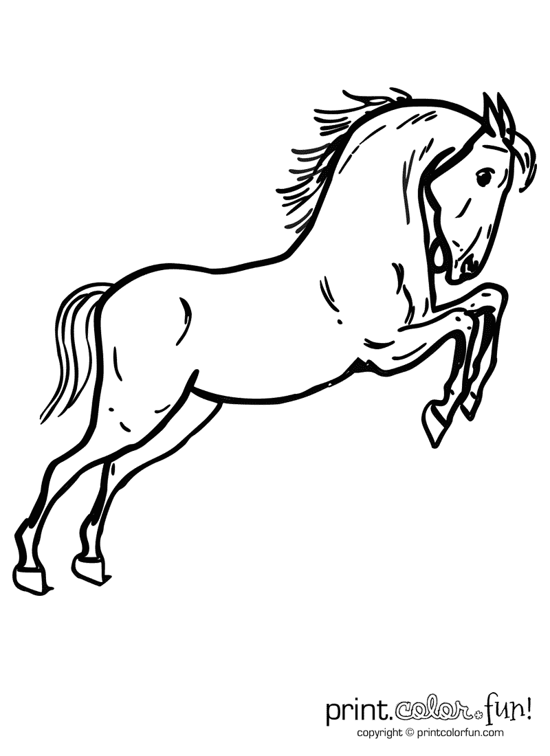 Jumping horse coloring page - Print. Color. Fun!
