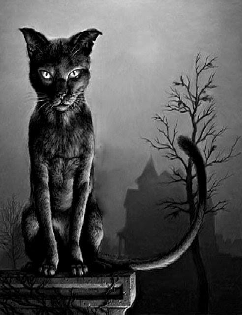 witchinqhour:  ✩☽Witchinqhour's Edits☾✩lSource  KEEP AWAY FROM END HOUSE OR I'LL SCRATCH YOUR EYES OUT! THE DEAD GAME HAS BEGUN.